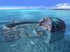 Underwater-alien-bases