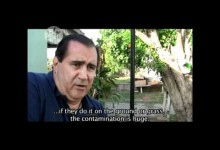 Cattle mutilation (Video)